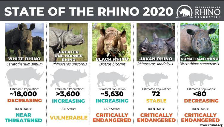 "GCC Celebrates Rhino Day 2020 and the 5 Year Anniversary of the Launch of ""Rhino Man"" the Movie!"